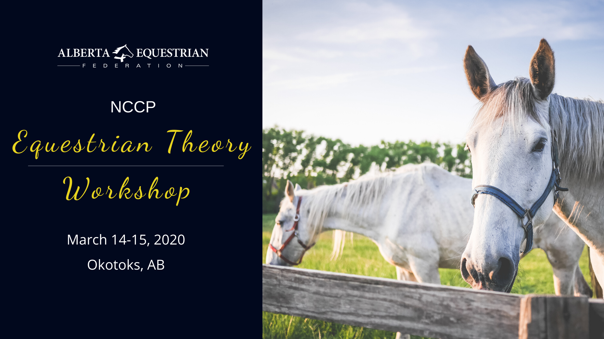 NCCP Equestrian Theory Workshop @ Lakeview Inns & Suites | Edmonton | Alberta | Canada