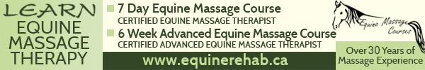 The School of Equine Massage and Rehabilitation Therapies - 6 Week Advanced Equine Massage Therapy Course @ Whitemud Equine Learning Centre Association